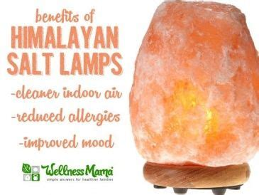 himalayan salt l warning 17 best images about just because on pinterest