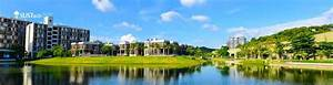 Southern University Of Science And Technology