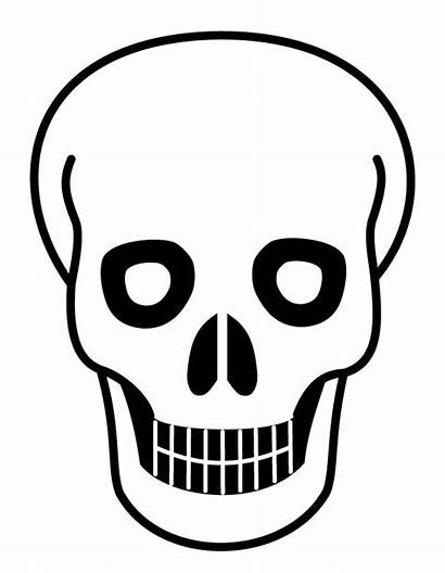 Skull Coloring Pages Human Printable Getcolorings