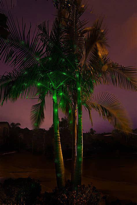 laser lights for trees sparkle magic grade laser lights