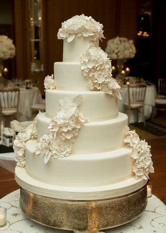 amy beck cake design chicago il