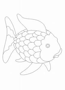 rainbow fish preschool templates sketch coloring page With rainbow fish colouring template