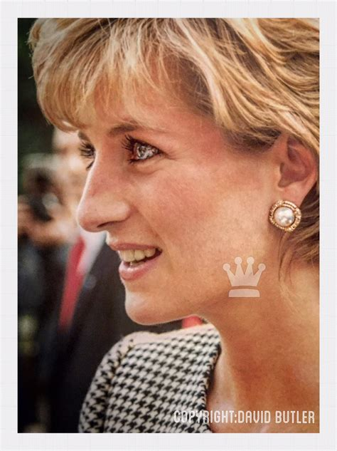 princess diana princess diana david butler princess diana news