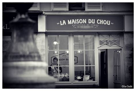 la maison du chou la maison du chou on behance