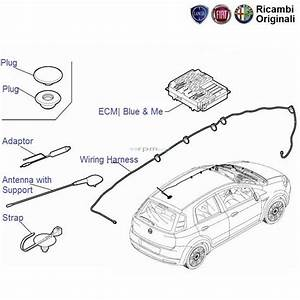 Fiat Punto  Radio Antenna  Wiring  Blue  U0026 Me Ecu  Ecm