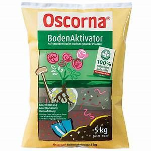 Oscorna Bodenaktivator Erfahrung : ihre themen rasen oscorna ~ Lizthompson.info Haus und Dekorationen