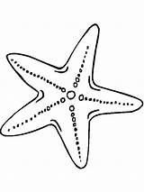 Starfish Coloring sketch template