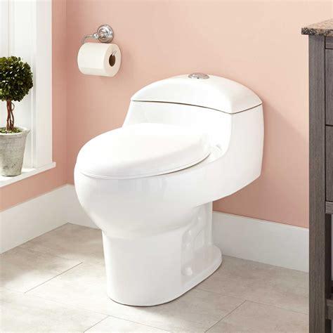 paladino dual flush  piece elongated toilet bathroom