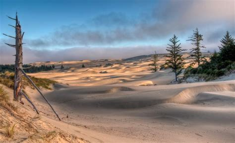 oregon sand dunes dune oregon coast country roads