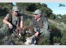 VIDEO Lov muflona na Dugom Otoku – Lovci Balkana