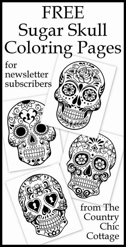Coloring Skull Pages Sugar Skulls Adults Printable