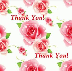 Thank You Pink Roses | www.pixshark.com - Images Galleries ...