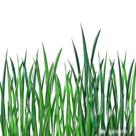 Fliesenaufkleber Gras by Fototapete Gras Pixers 174 Wir Leben Um Zu Ver 228 Ndern