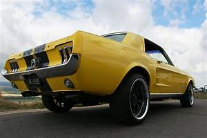 1967 Ford Mustang 302 High Performance Coupe - Muscle Car