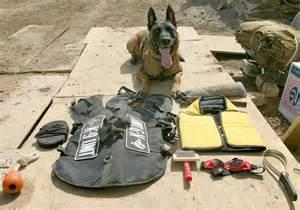 Military Working Dog Gear