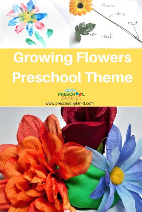 growing flowers preschool theme 777 | growing flowers