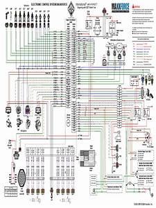 Maxxforce 7 Ecm Wiring Diagram