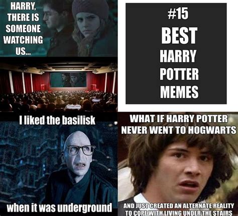 Harry Potter Funny Memes - 14 hilarious harry potter memes hp books and such pinterest
