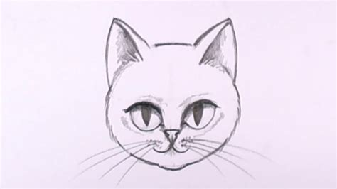draw  cat face  pencil drawing lesson mat