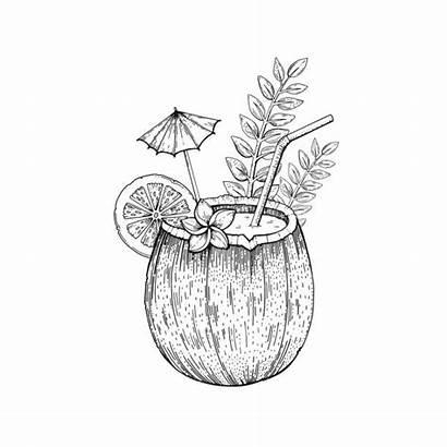 Drink Tropical Vector Clip Coconut Cocktail Hawaiian