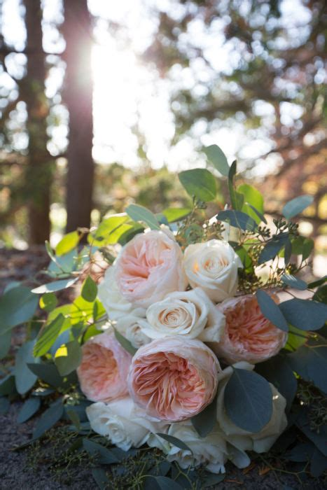 fiftyflowers review outdoor wedding in minneapolis mn