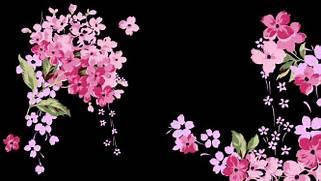 Cute Black And Pink Wa...