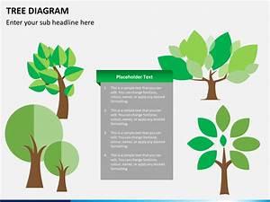 Powerpoint Tree Diagram