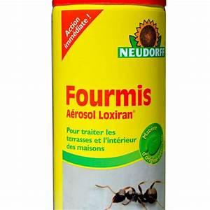 Anti Fourmi Naturel : bombe a rosol cologique anti fourmis action imm diate 400 ml ~ Carolinahurricanesstore.com Idées de Décoration