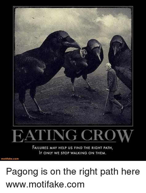 Crow Meme - eating crow failures may help us find the right path if only we stop walking on them motifakecom