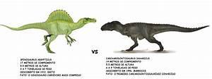 Pin Carcharodontosaurus Vs Spinosaurus Taringa on Pinterest