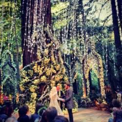 forest wedding venues billionaire 39 s wedding in big sur california venue safari