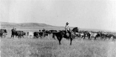 vita da cowboy wwwfarwestit