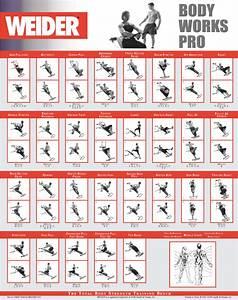 Weider Workout Chart Images