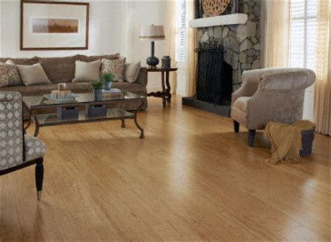 Stranded Bamboo Flooring Dogs by Product Tool Morning Bamboo Flooring Interior