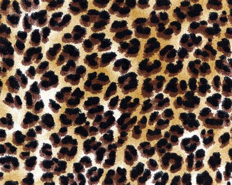 Animal Print Fabric For Upholstery by Drapery Upholstery Fabric 100 Cotton Animal Print Small