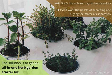 Indoor Herb Garden Starter Kit-garden Inspiration