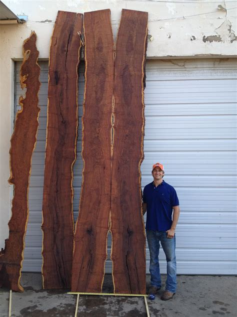 mesquite burl slabs  long  wide  thick
