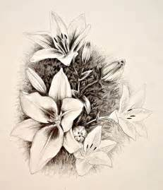 Sketches of Flowers Art