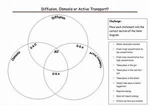 Exchange Of Materials Venn Diagram By Rmr09