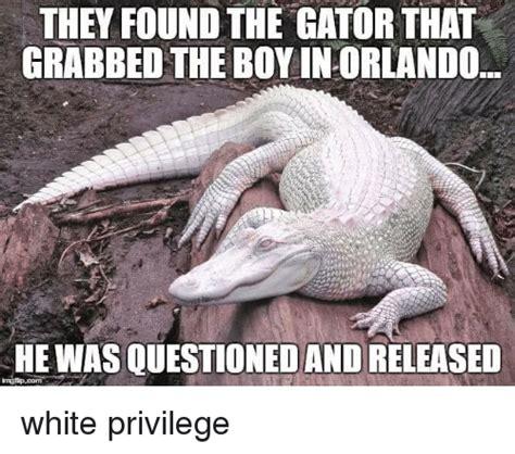Gator Meme - gator meme 28 images gator imgflip gator meme 28 images crocodile vs alligator memes gator