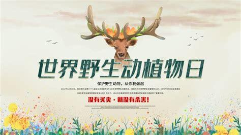 世界野生动植物日宣传海报设计_站长素材