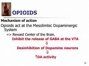 Morphine Mechanism Of Action Ivms Cns Pharmacology Intro To Drugs Of Abuse Ii Opioids