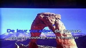 La Mémoire Et La Mer : j 39 essaie de chanter un ferr la m moire et la mer youtube ~ Melissatoandfro.com Idées de Décoration