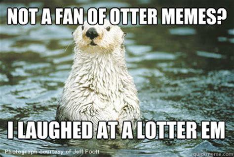 Otter Memes - otter hug memes