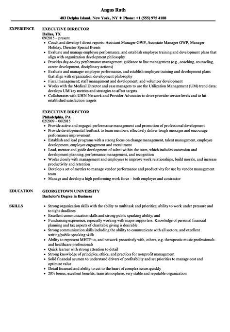 Executive Director Resume by Executive Director Resume Sles Velvet
