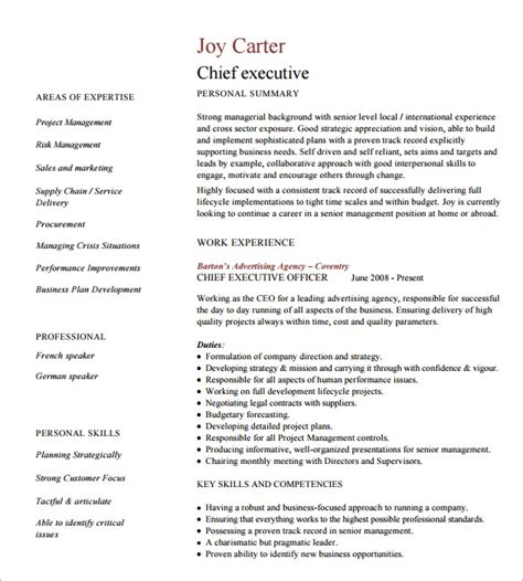 Executive Resumes Templates by 16 Executive Resume Templates Pdf Doc Apple Pages