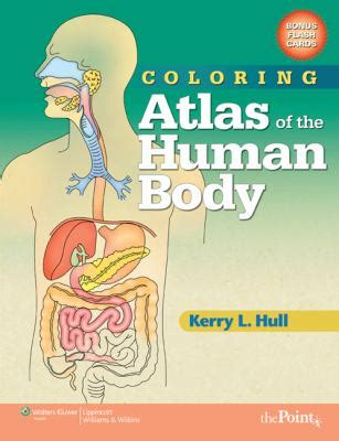 Coloring Atlas Of Human Anatomy by Coloring Atlas Of The Human Rent 9780781765305