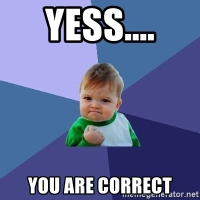 Who Are You Meme - yess you are correct success kid meme generator
