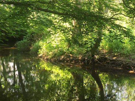 pigeon creek park hollandorg