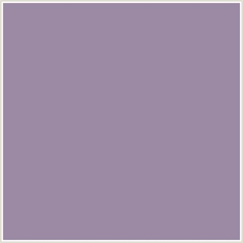 what color is amethyst 9c8aa5 hex color rgb 156 138 165 amethyst smoke
